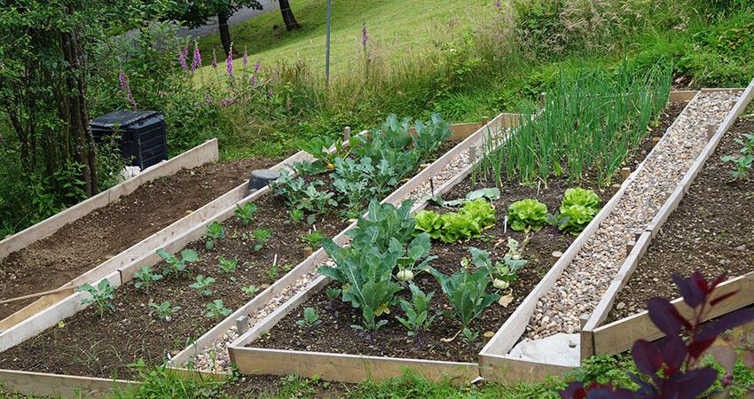 Gererationsgerechter Garten